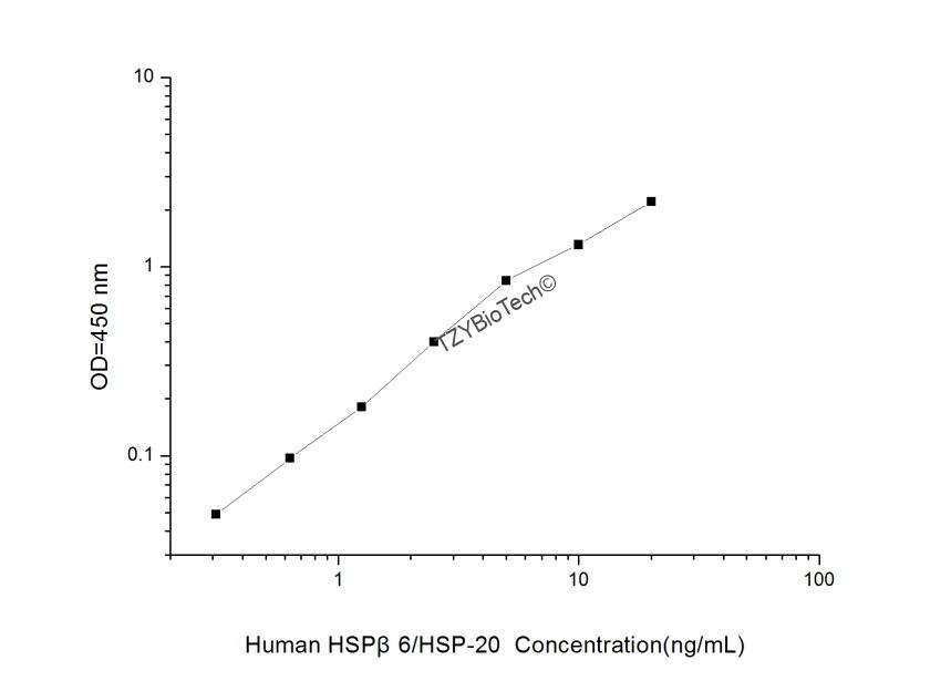 測定 法 Hsp